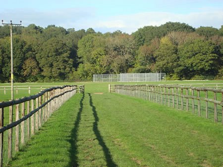 Post and rail paddocks
